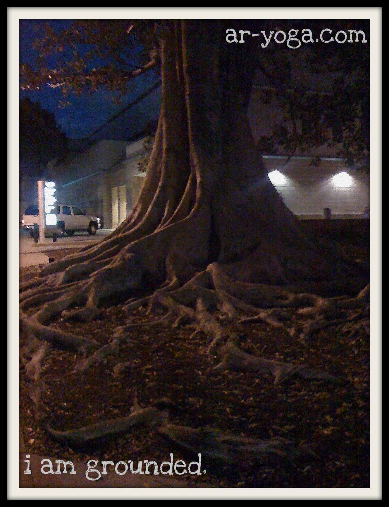 grounded tree